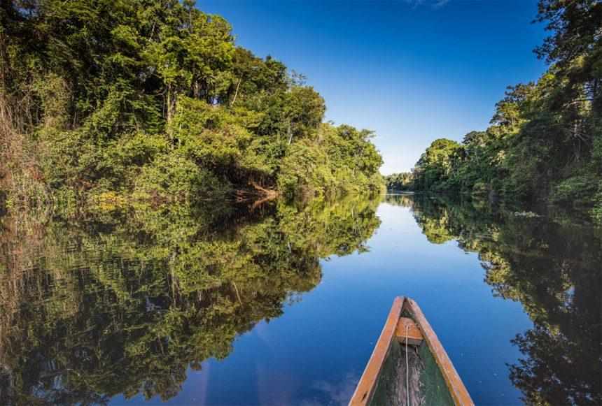 Wonderful Pacaya Samiria Iquitos Tour