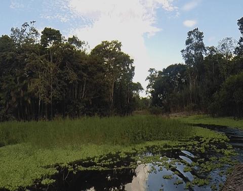Loreto (Iquitos)